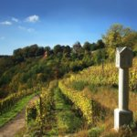 The vineyard of Rothenburg ob der Tauber