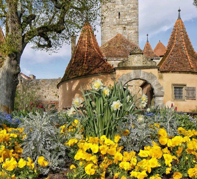 Blumenbeet vor Rothenburgs Burgtor