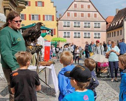 Jahreshöhepunkte in Rothenburg ob der Tauber - Stadtmosphäre